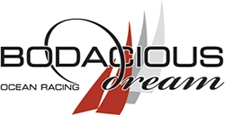 Bodacious Dream - Our Logo